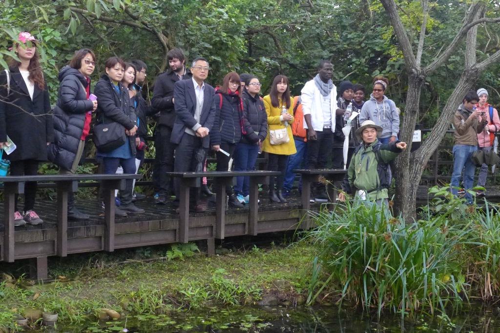 Guandu Nature Park and ecological tour
